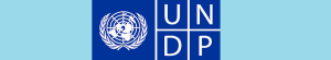 UNDP logo_0.jpg